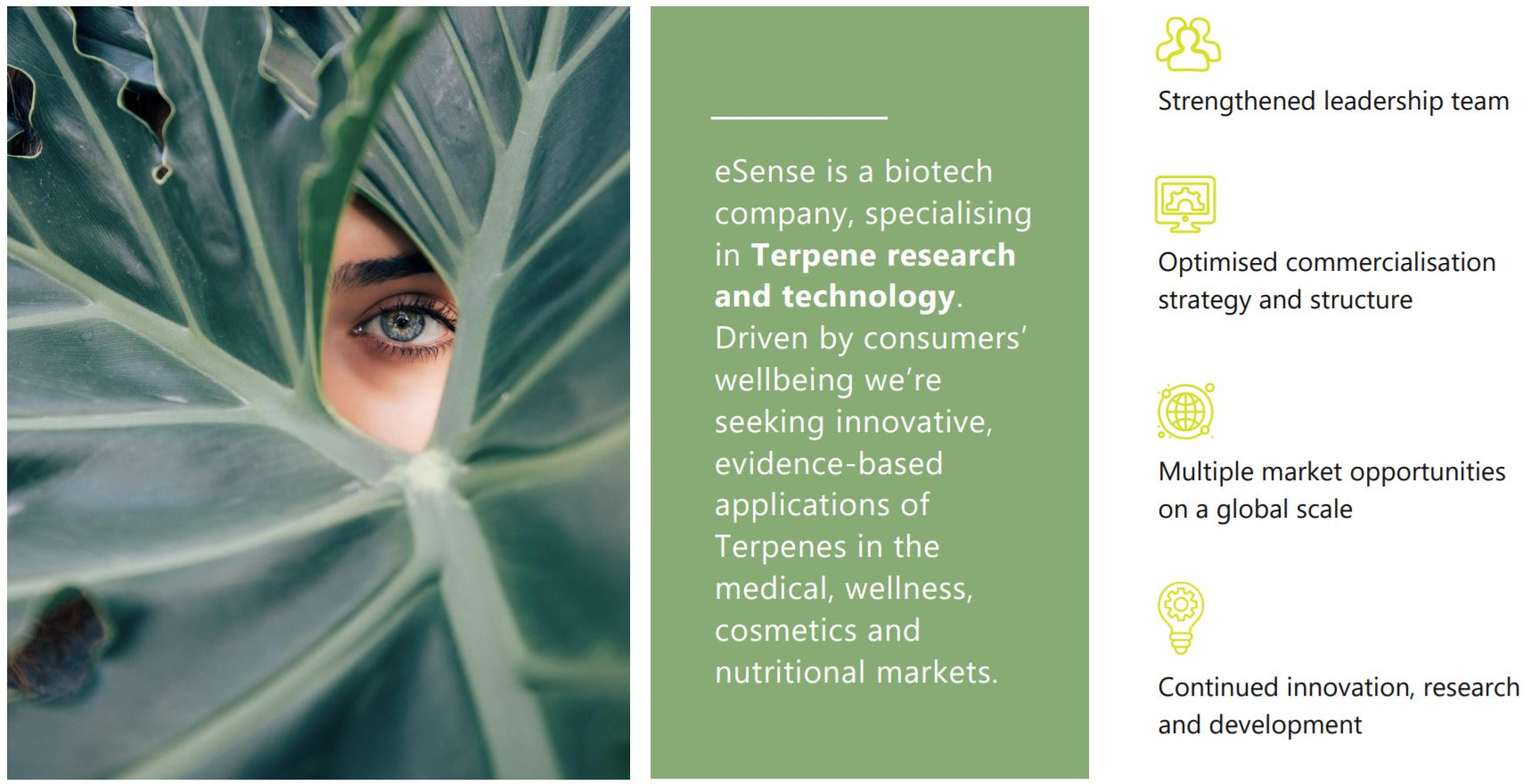 Photo of eSense-Lab eyes new commercialisation opportunities for unique plant-profiling technology