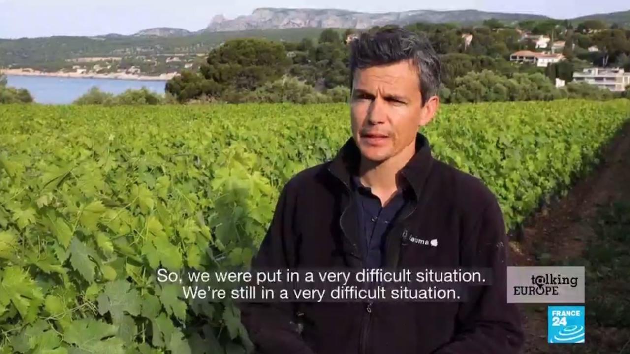 Photo of Reaching the bottom of the barrel: Coronavirus pandemic batters European wine production