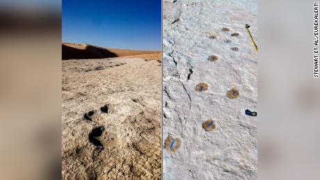 Photo of 120,000-year-old footprints found in Saudi Arabia — and they might be human