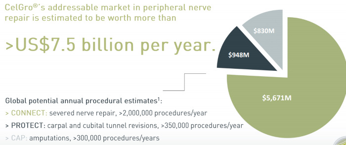 Photo of Orthocell at forefront of growing market opportunity in regenerative musculoskeletal treatment