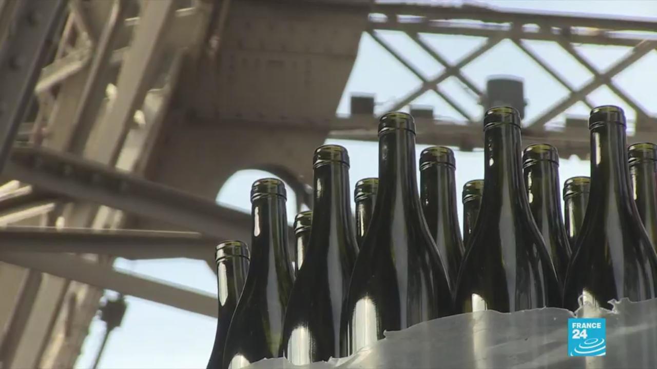 Photo of Elegance and finesse: Eiffel Tower wine cellar bears fruit as merlot debuts
