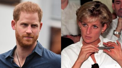 Photo of Prince Harry getting 'regular updates' about BBC probe into Princess Diana Panorama interview