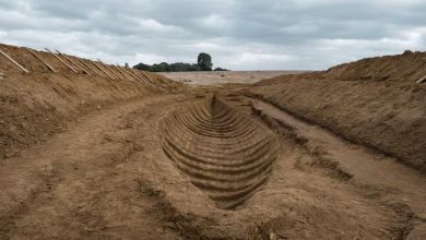 Photo of Netflix movie The Dig immortalises extraordinary Sutton Hoo discovery