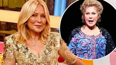 Photo of Kerri-Anne Kennerley suffers serious break after falling from trapeze in Pippen