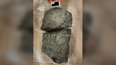 Photo of Almost 100 ancient Mesopotamian artefacts seized in Norway